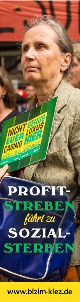 BIZIM_banner_profit-streben_60x160